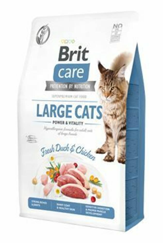 Brit Care Brit Care Cat GF Large cats Power&Vitality 2kg