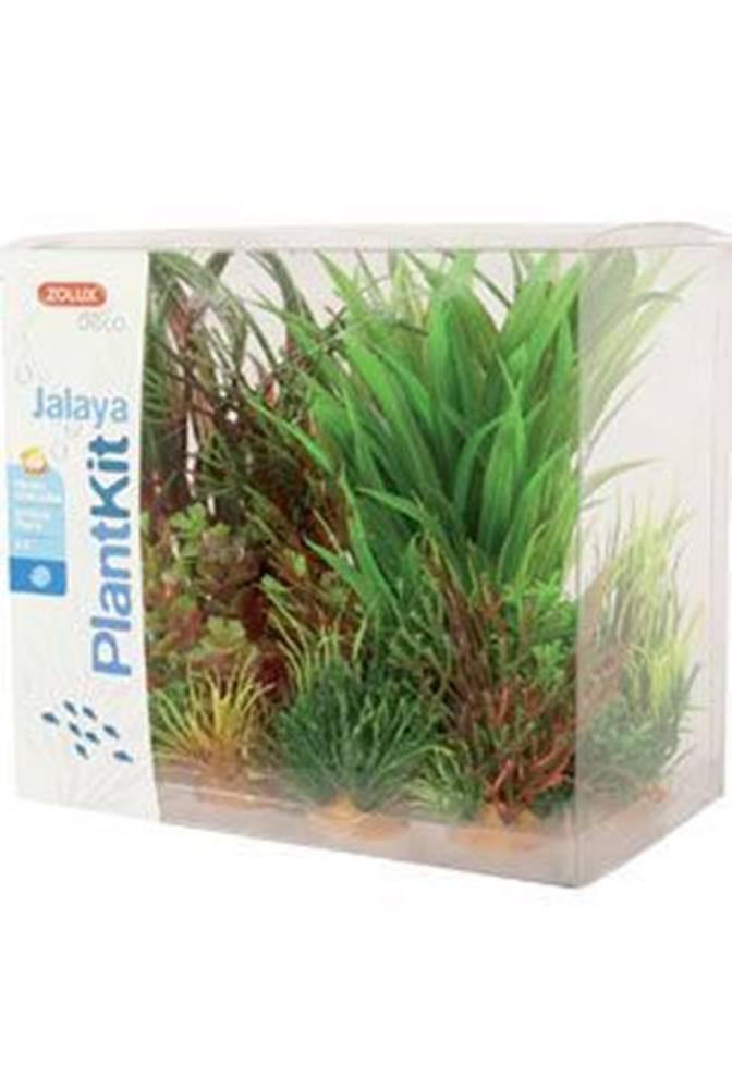 Zolux Rastliny akvarijné JALAYA 3 sada Zolux