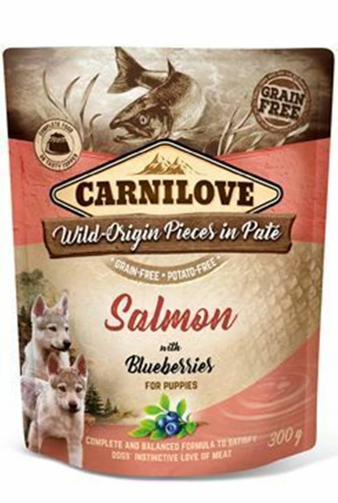 Carnilove Carnilove Dog Pouch Paté Salmon & Blueber Puppies 300g