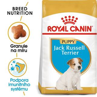 RC JACK RUSSELL JUNIOR - 500g