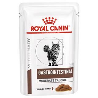 Royal Canin Veterinary Diet Cat GASTROINTESTINAL MC vrecko - 85g