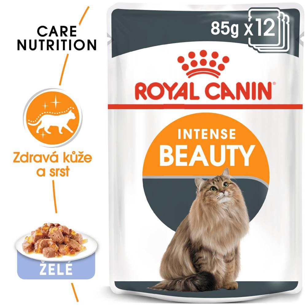 Royal Canin RC cat  kapsa   INTENSE BEAUTY/želé - 85g