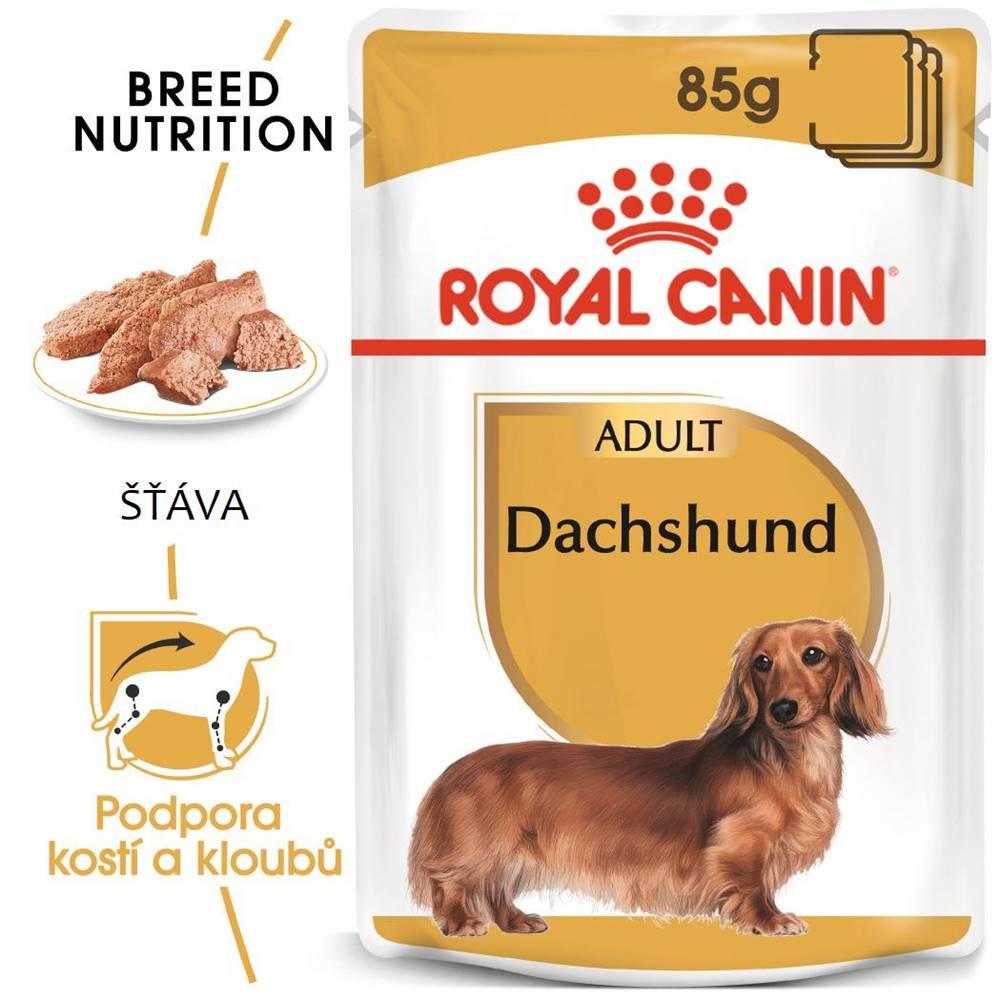 Royal Canin Royal Canin Dachshund Loaf - kapsička s paštétou pre jazvečíka - 85g