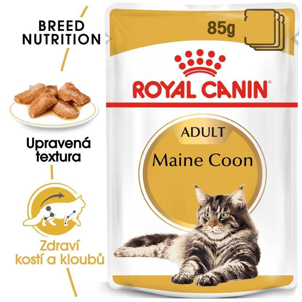 (bez zařazení) RC cat  kapsa   MAINE coon - 85g