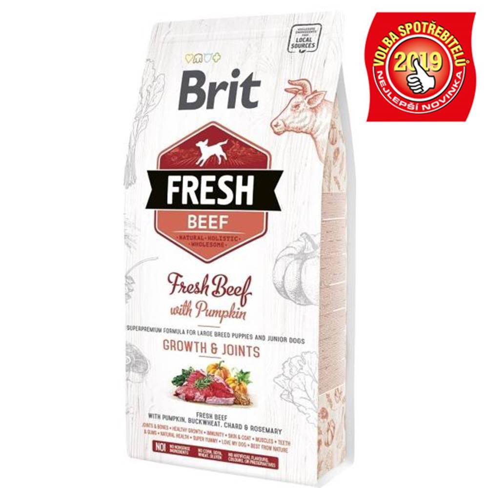 Brit BRIT FRESH PUPPY LARGE  beef/pumpkin - 2,5kg