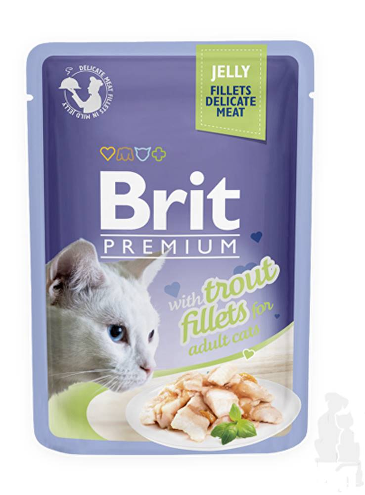 Brit Brit Premium Cat D Fillets in Jelly with Trout 85g