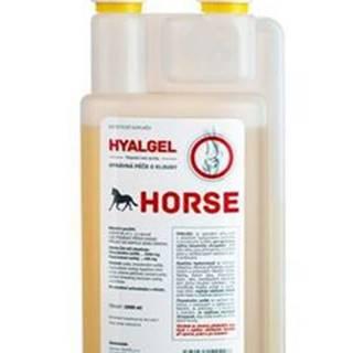 Hyalgel Horse jablko 1l