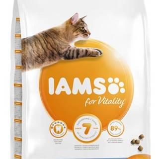 IAMS cat  DENTAL  chicken - 800g
