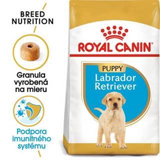 ROYAL CANIN Labrador Puppy 12 kg granule pre šteňa labradora