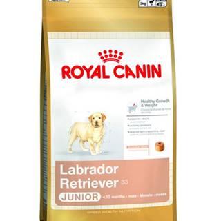ROYAL CANIN Labrador Retriever Junior 1 kg granule pre šteniatka do 15 miesiaca, rasa labrador retriever