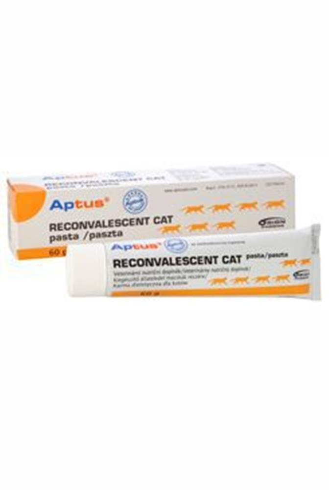 Orion Aptus Reconvalescent CAT pasta 60g