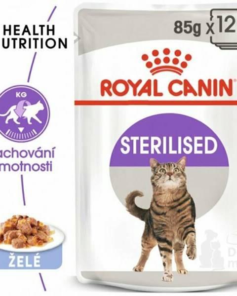 Kapsičky Royal canin VD (dieta)