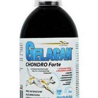 Gelacan Chondro Forte Biosol 500ml