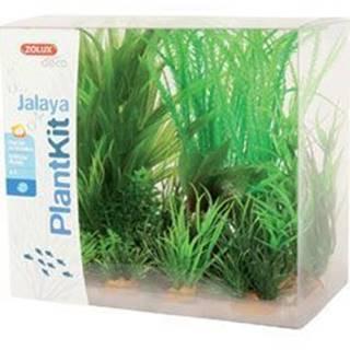 Rastliny akvarijné JALAYA 1 sada Zolux