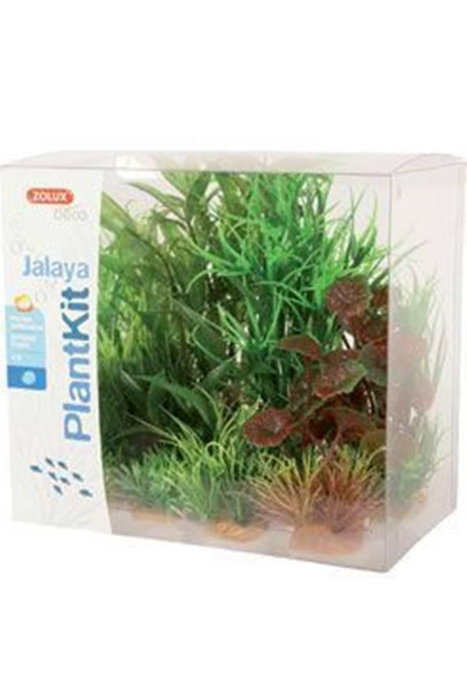 Zolux Rastliny akvarijné JALAYA 2 sada Zolux