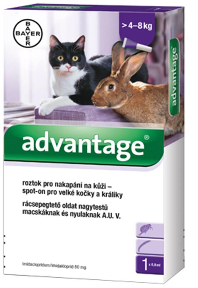 Bayer Advantage 80 10% 1x0,8ml pro kočky nad 4kg