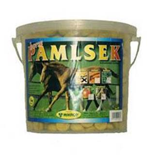 Mikrop pochoutka pro koně kyblík Mrkev 2,5kg