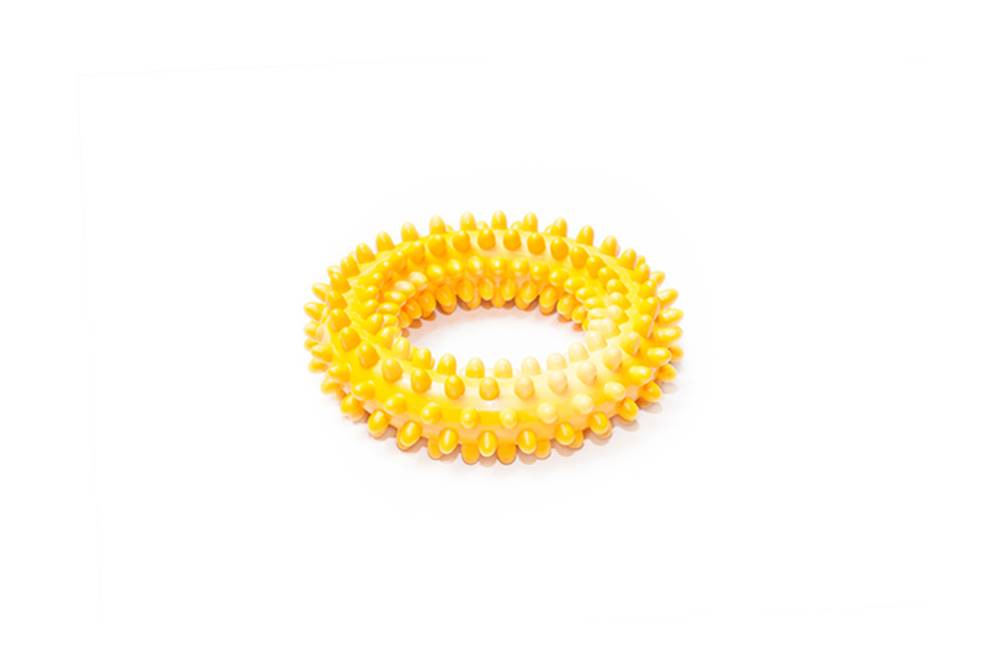 SUM-PLAST Hračka pes Kruh s bodlinami plovací 10cm SP